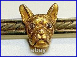 Antique Victorian Frenchie French Bull Dog 14k Gold Bar Pin with Diamond Eyes