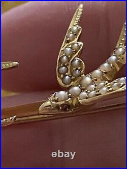 Victorian Gold & Pearl Swallow Pair Bar Brooch Set With Ruby Eyes